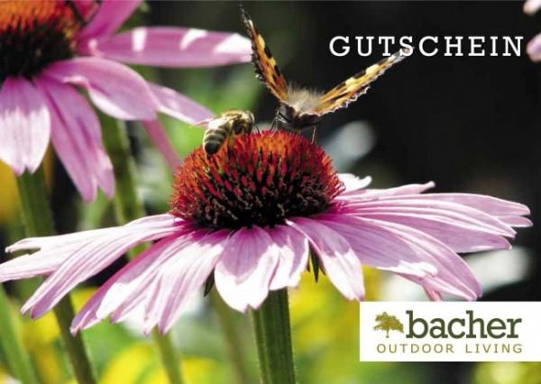"""Gutschein """"Echinacea"""""""